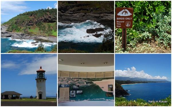 hawaii09-17.jpg