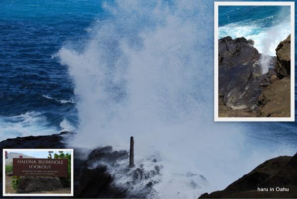 hawaii09-22.jpg